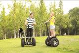 電気ゴルフカートモーター、ゴルフカートの車輪、ゴルフスクーターの製造業者