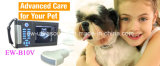 Custo - Veterinary eficaz Ultrasound Scanner Ew-B10V com Convex Probe C3.5r60 para Abdominal e Reproduction