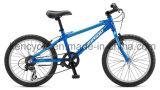 熱い販売山Bike/MTBのバイクまたはマウンテンバイクBicycles/MTBの自転車かAtbのバイク