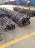 Joint de dilatation modulaire pour la passerelle vers l'Egypte