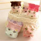 猫が付いている夏の網デザインソックスは赤ん坊のための良質のソックスを設計する