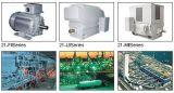 Aufsatz-Pole-Wind-Turbine-Generator