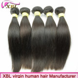 Virgin Remy Mink Weaving Brazilian Hair Human Hair Company