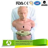 Neues halbes Karosserie CPR-Trainings-Männchen für Studien-Gebrauch