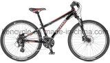 حارّ يبيع جبل [بيك/متب] دراجة/[موونتين بيك] [بيسكلس/متب] دراجات