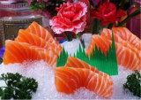 바다 언 물고기를 위한 8ton/Day 조각 제빙기