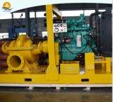 Pompa materiale d'ottone centrifuga dell'acqua di mare dell'acciaio inossidabile di grande capienza