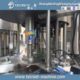 Terminar a planta de engarrafamento pura da bebida da água
