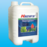Engrais hydrosoluble d'extrait organique liquide d'algue pour le jet de feuillage