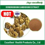 Порошок выдержки травяного Dendrobium выдержки Candidum