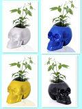 Decoración humana del arte del contenedor del crisol de la planta del cráneo de la resina