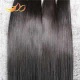 8Aスムーズな加工されていないバージンの人間の毛髪のまっすぐなブラジルの毛の織り方の絹