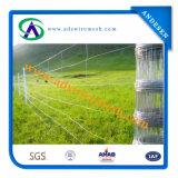 電流を通されたHinge Joint Fence (亜鉛コーティング240G/M2)