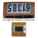 Luces de la placa de puerta y el panel solar de los trabajos manuales