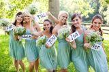 짧은 회교도 신부 들러리 복장을 고르는 1개의 어깨 시퐁 수정같은 파란 Prom 당