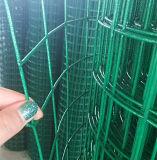 緑PVCによって塗られる溶接された金網