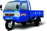 De Vrachtwagen van het tri-Wiel van Wuzheng met de Rem van de Lucht