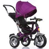 Rad drei drücken Kinder/Baby-Dreirad/Baby-Spaziergänger von Hand ein (OKM-1317)