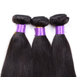 Wholease brasilianisches Hair, Straight brasilianisches Hair Sew in Weave