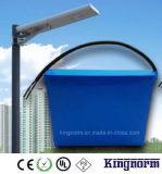 batería de 12V30ah LiFePO4 para la luz de calle solar integrada
