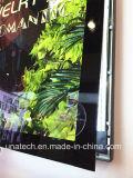 Caja de luz de visualización magnética LED de Slim