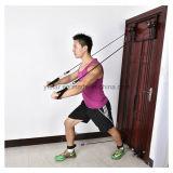 La ginnastica del portello di alta qualità con la resistenza lega all'ingrosso