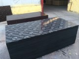 La película caliente de las ventas de la Fábrica-Directo caliente de la venta hizo frente a la madera contrachapada hecha frente película de la construcción de Shandong Chengxin de la madera contrachapada en edificios industriales