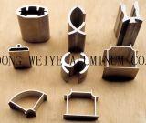 Profils en aluminium en aluminium d'extrusion de Sparying de carbone de profil/fluor