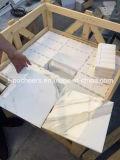 Telha e laje de mármore brancas, laje de mármore branca fina, branco de mármore do preço das lajes de Carrara