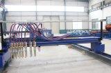 Pórtico-Tipo conducido Doble-Cara económica cortadora de Qgi del CNC