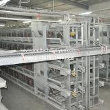 H печатает самое лучшее оборудование на машинке клетки цыпленка слоя цены