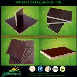 WBP Grade Shuttering Plywod para Uso de Construção