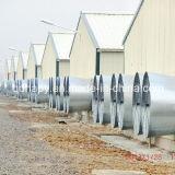 최신 판매 Prefabricated 가금은 보일러를 위한 가금 장비로 유숙한다