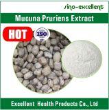 L-Допа выдержки 98% Pruriens Mucuna