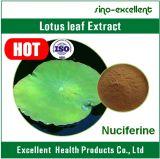 Poudre sèche normale 2% Nuciferine d'extrait de lames de lotus de 100%