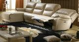 Salon Cuir Meubles Chambre Canapé Inclinable (R01)