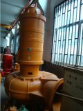 CER Approved Electrical Big Flow Cast Iron Submersible Sewage Pump (250WQ600-25-75)