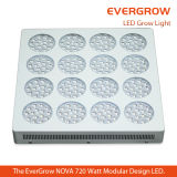 400W avanzato LED Grow Light per il ODM dell'OEM