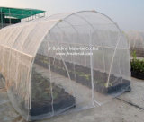 HDPE de Maagdelijke Materiële Bescherming van het anti-Insect Netto met UV voor Landbouw