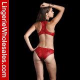 숙녀 비키니 빨간 뱀 인쇄 지퍼 정면 높은 목 섹시한 Monokini 수영복