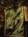 수직 정원 구 Wall05182910의 고품질 인공적인 플랜트 그리고 꽃