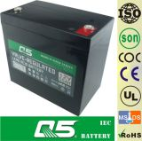 12V55AH, pode personalizar 12V45AH; Bateria da potência do armazenamento; UPS; CPS; EPS; ECO; Bateria do AGM do Profundo-Ciclo; Bateria de VRLA; Bateria acidificada ao chumbo selada