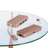 USB C Hub Adaptateur Hub Multi-Port Type C avec 4k HDMI (30Hz), Type-C Pass Through Charging et Up-Downstream Transmiting Data