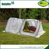 Serra trasparente del giardino di protezione dell'impianto del PVC di Onlylife mini