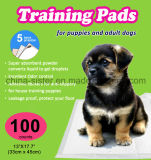 중간 크기 모든 나이의 성숙한 개 그리고 강아지를 위한 최고 흡수성 강아지 훈련 패드