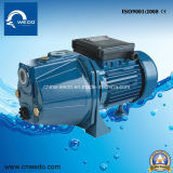 제트기 60s Electric Surface 각자 Priming Domestic Jet Water Pumps 0.37kw 1inch Outlet