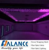 Optische de vezel fonkelt de Lichten van het Plafond van de Ster voor de Decoratie van het Plafond van DJ