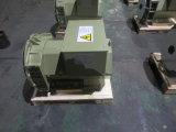 Generatore senza spazzola dell'alternatore di serie di Jl Stf