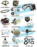 2 piezas del motor del movimiento 50cc Morini (AD50)