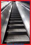Innenrolltreppe-sicheres Handlauf-HochleistungsEinkaufszentrum